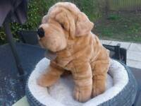 Chinese yomiko classics sharpei excellent condition