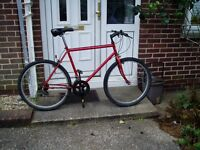 "RALEIGH, MOUNTAIN BIKE, 21"" FRAME 26"" ALLOY WHEELS SERVICED."