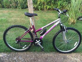 "Falcon Eclipse Ladies/ Girls Mountain Bike; 15"" Pink & Silver frame ; 18-gears; 26"" Alloy wheels"
