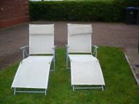 two garden lounger sunbeds
