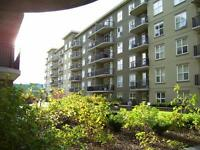 FULLY FURNISHED  ONE  BEDROOM CONDO  AVAILABLE NOW