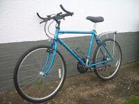 Mens Mountain Bike for Sale