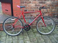 Apollo Laser Adult Mountain Bike