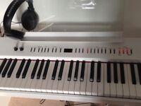 Electric Piano - Roland FP4 - Brighton