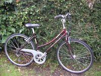 ladies ridgeback moulin 19 in frame,comfortable classic,runs well