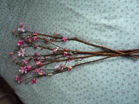 5 x Magnolia Branches - Never used