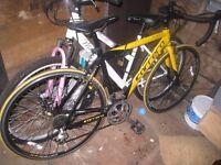 Carrera TDF Ltd Road bike/racer