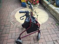 Mobility shopping trolley with basket
