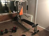 Multi-Gym Home Fitness Machine with Extra Weights