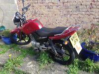 Yamaha YBR 125 Motorcycle - good condition!