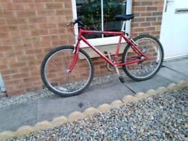 Bike or bikes for sale.