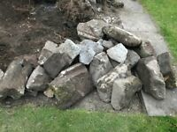 Rockery Rocks / Stones - free collection - removal required asap