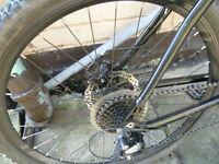 Mountain bike - brake disk