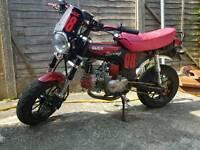 Honda DAX Rep