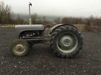 1956 Ferguson tef 20 diesel tractor