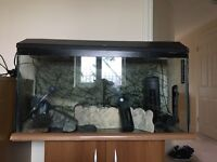120l large fish tank with stand