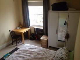 Very spacious double room in recently refurbished flat in Denmark Hill