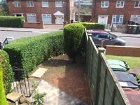 K.J.J.M garden maintenance. grass cut, hedges cut, fencing, weeding, pruning,turfing and seeding