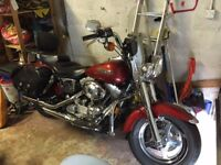 Harley Davidson Dyna FXD custom