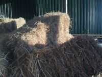 Small square bales of hay for sale 2016 crop suitable for cattle