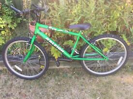 Green Raleigh Mountain Bike