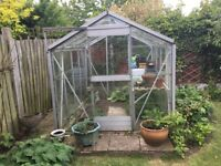 Greenhouse for sale All Glass. Size 6'x6'
