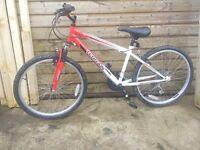 Boys 20 inch bike Terrain Nevis