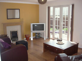 Luxury Student Property - 7 Bedrooms, Large Lounge, Large Kitchen Diner