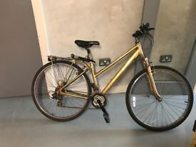 Gold Bike for sale!