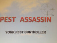 Trainee Pest Control technician wanted