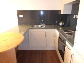 Light and airy one bedroom house to let in a quiet close in Clapham Village £640PCM
