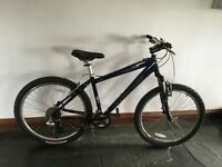 Specialized Ladies mountain bike in excellent condition