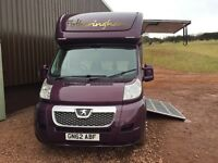 Brand New Quality Coach Build Horsebox - Plum metallic with cream/plum diamond stitch