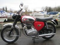 BSA A65 1962 Fully Restored - DEPOSIT NOW TAKEN