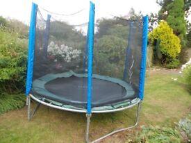 8' Plum trampoline with new net