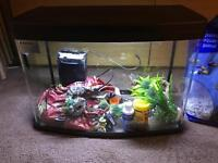 Fish tank 64l interpet with 2 heaters filter FULL SETUP