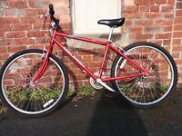 "16"" Raleigh Firefly Series 1 Bike"