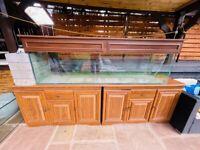 6 Ft Aquarium Fish Tank For Sale - Bargain