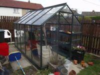 Greenhouse 10 x 6 (interior dimensions), Aluminium Frame and Glass Panes