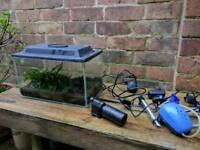 Fish tank 14l starter kit java fern and bog wood