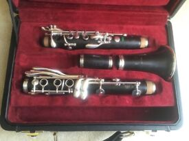 Buffet Festival Greenline Bb Professional Clarinet
