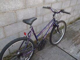 ladies bike 26''raleigh purple