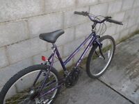 ladies bike 26''raleigh purple
