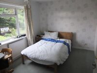 CUMNOR OXFORD: BIG Dble Room. Beaut views. Friendly. Centre: 13min bus;20 cycle.Kitchen-diner,lounge