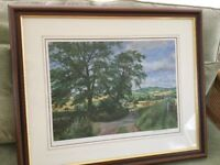 Signed Macintosh Patrick limited edition no 485. Midsummer Shadows