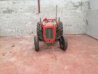 Massey Ferguson vintage tractor