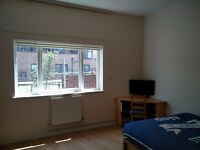 Spacious Double Room in Stoke Newington!