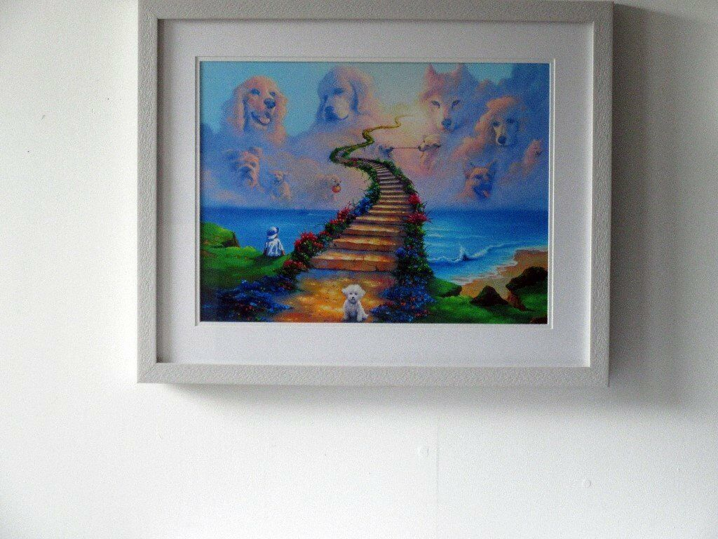 All Dogs Go To Heaven Print In Newquay Cornwall Gumtree