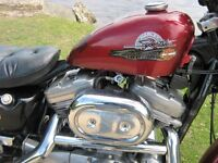 1200cc HARLEY DAVIDSON