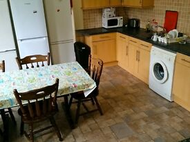 *** Double room freshly painted , garden, big kitchen ***